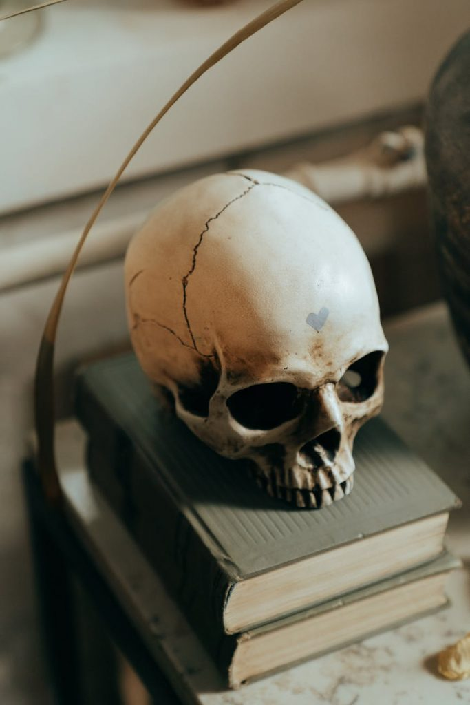 white skull on white wooden table; spooky author