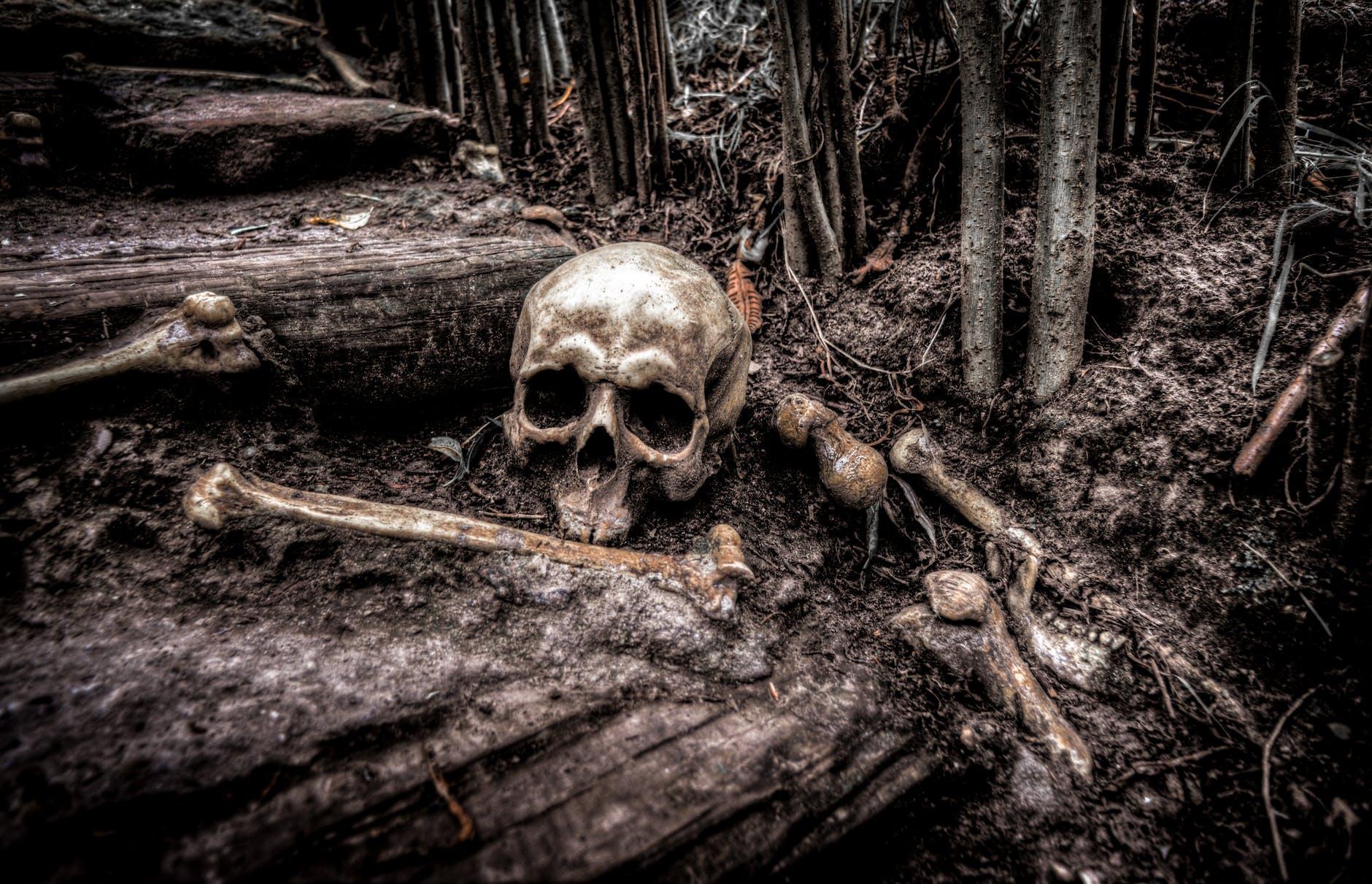 creepy dark fear grave