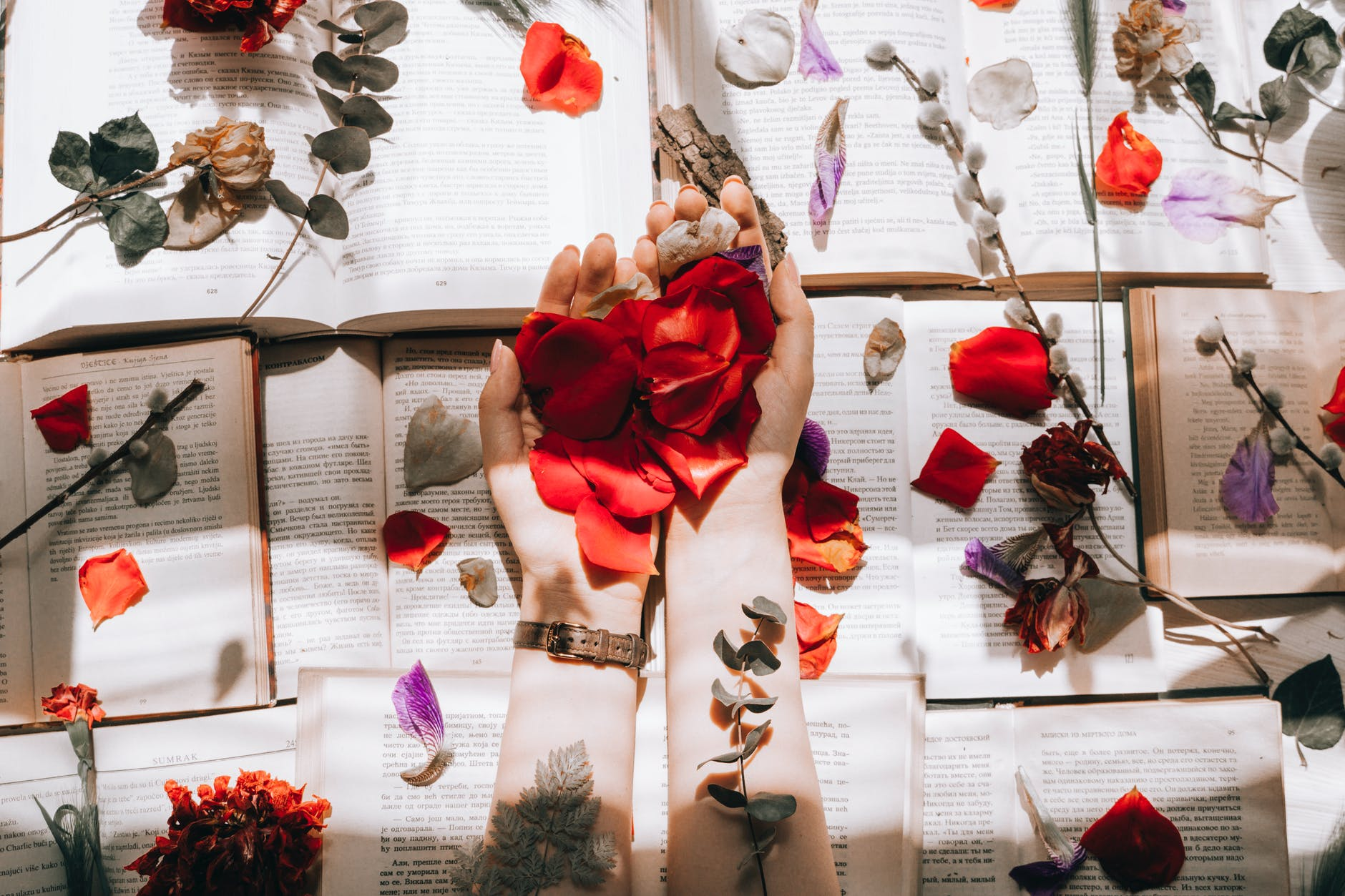 crop woman with bright flower petals on books